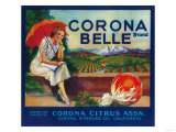 Corona Belle Orange Label - Corona  CA