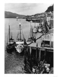 Fishing Boats along shore in Southeastern Alaska Photograph - Alaska