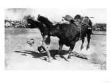 Cowboy being Bucked by Bull Rodeo Photograph - Miles City  MT