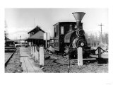 Fairbanks  Alaska View of Alaska Railroad Depot Photograph - Fairbanks  AK