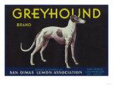 Greyhound Lemon Label - San Dimas  CA