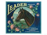 Leader Orange Label - Corona  CA