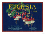 Fuchsia Lemon Label - La Verne  CA