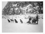 Four Girls on Dog Sled Photograph - Canada