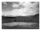 Cowboys and Horses near Pond at the Nine Quarter Circle Ranch Photograph - Eldridge  MT