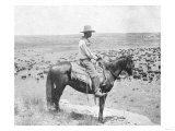 Cowboy on Horseback Watches His Herd Photograph - Texas