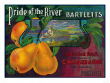 Pride of the River Pear Crate Label - Locke  CA