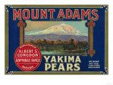 Mount Adams Pear Crate Label - Yakima  WA