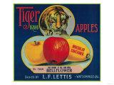 Tiger Apple Crate Label - Watsonville  CA