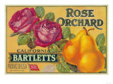 Rose Orchard Pear Crate Label - San Francisco  CA