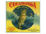Owl Orange Label - Cucamonga  CA