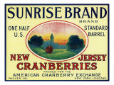 Sunrise Brand Cranberry Label