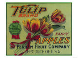Tulip Apple Crate Label - Yakima  WA