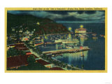 Night Time on Santa Catalina at Avalon Bay - Santa Catalina  CA