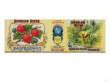 Russian River Raspberry Label - San Francisco  CA