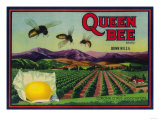 Queen Bee Lemon Label - Corona  CA