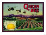 Queen Bee Lemon Label - Corona  CA