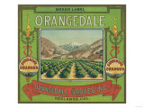 Orangedale Orange Label - Redlands  CA