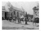 Pan-American Exposition Camel Parade Photograph - Buffalo  NY