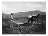Native American Plowing His Field Photograph - Sacaton Indian Reservation  AZ