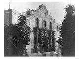 The Alamo in San Antonio  TX Photograph No2 - San Antonio  TX