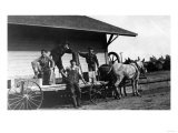 Young Men Posing on a Mule Wagon