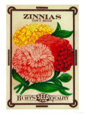 Zinnias Seed Packet