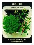 Herbs Seed Packet