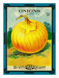 Onions Seed Packet