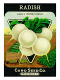 Radish Seed Packet