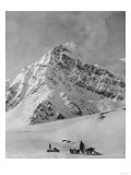 Mt McKinley Dogsled Scene Photograph - Alaska
