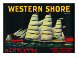 Western Shore Pear Crate Label - Hood  CA