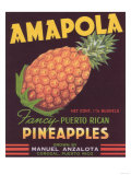 Amapola Pineapple Label - Corozal  PR