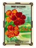 Dwarf Nasturtium Seed Packet