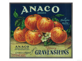 Anaco Apple Crate Label - San Francisco  CA
