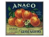 Anaco Apple Crate Label - San Francisco  CA