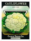 Cauliflower Seed Packet