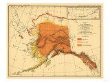 Alaska - Bear Population State Map