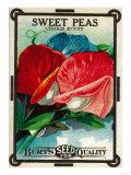 Sweet Peas Seed Packet