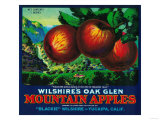 Wilshire's Oak Glen Apple Crate Label - Yucaipa  CA