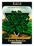 Kale Seed Packet