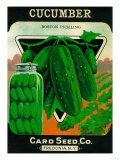 Cucumber Seed Packet