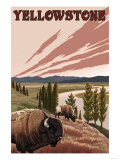 Yellowstone - Bison Scene