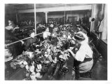 Women Working in a Teddy Bear Factory Photograph