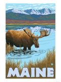 Maine - Moose Drinking in Lake