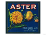 Aster Brand Citrus Crate Label - San Bernardino  CA