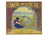 Weaver Orange Label - Piru  CA