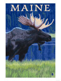 Maine - Moose in the Moonlight