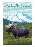 Moose with Mountain - Colorado