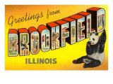Greetings from Brookfield  Illinois